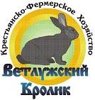 Ветлужский кролик, КФХ
