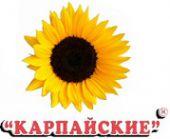 Баймашев ИП