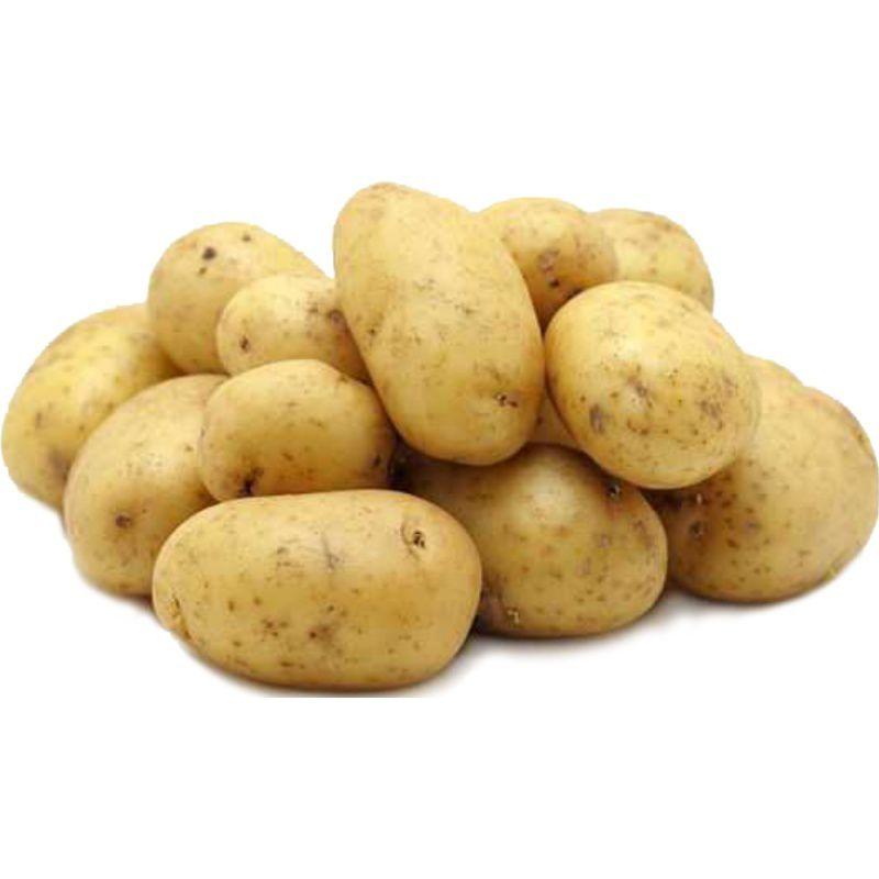 Теперь жителям Нижнего Новгорода круглогодично доступен картофель местного производства.