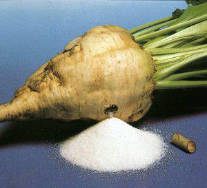 Сергачский сахарный завод ожидает модернизация